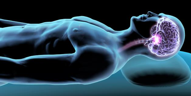 harmful effects of sleeping too much on health