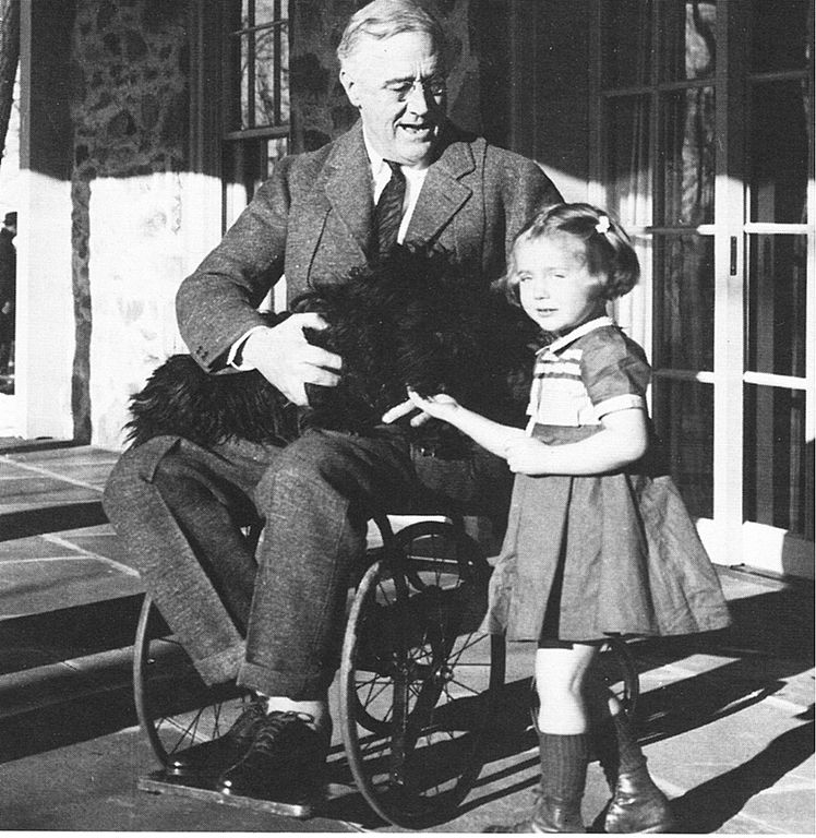 President Franklin D. Roosevelt on wheelchair