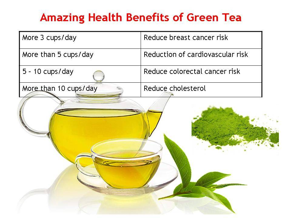 Can Pregnant Drink Green Tea