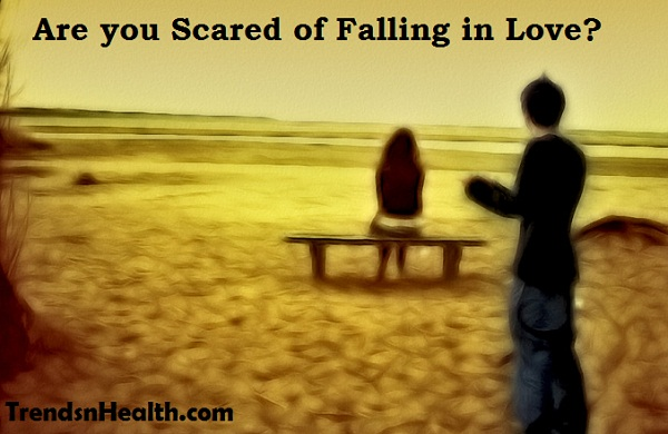 dont fall in love, love hurts, afraid of falling in love