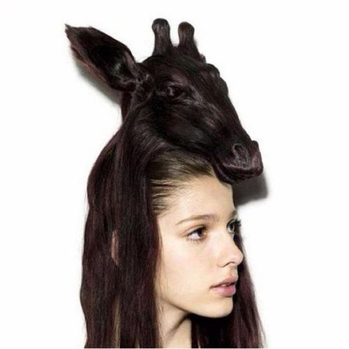 weird strange crazy hairdo animal hairstyle