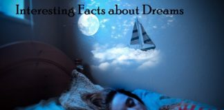 amazing rare bizarre facts about dreams