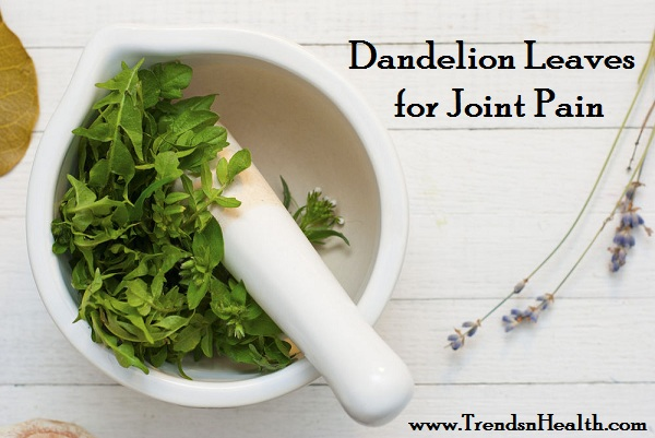 Treat Joint pain with Dandelion Leaves